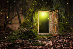 House inside tree. In magic forest Royalty Free Stock Photo