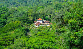 House in the jungle Stock Images