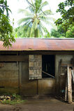 House in jungle Big Corn Island Nicaragua Stock Images
