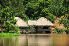 House in the jungle. Stock Image
