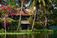 House in the jungle of Kerala royalty free stock image