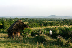 House in Kenya. Traditional House in Kenya stock image