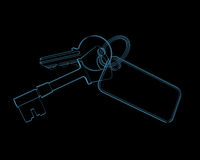 House keys (3D xray blue transparent) Royalty Free Stock Image