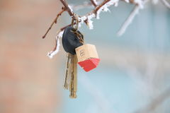 House keys with House Keychain Stock Images