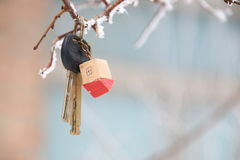 House keys with House Keychain Royalty Free Stock Image
