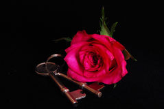 House keys and rose royalty free stock image