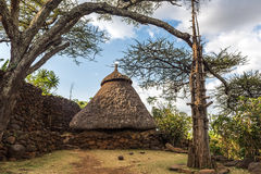 House in a Konso Village with generations tree Royalty Free Stock Image
