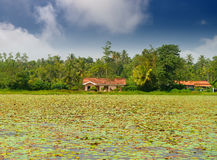 House on the lake Royalty Free Stock Image