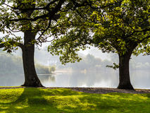 House on lake frames by two trees with grassy foreground. A house on the shore of Derwent Water in the Lake District is framed by two trees which are backlit by stock images
