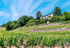 House in the Lavaux Vineyards. Royalty Free Stock Photo