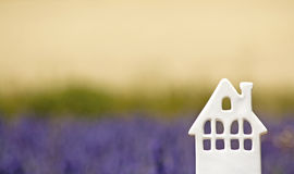 House, in Lavender field. Provence. Royalty Free Stock Image