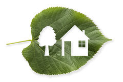 House in a leaf Stock Images