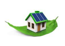 House on Leaf Isolated Stock Photo