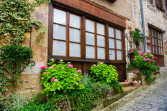 House with little front garden Stock Image