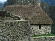 House made of rocks. This is a construction of machu picchu peru looks very little but is big because of its history Royalty Free Stock Photography