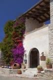House in Mallorca. Overgrown with bougainvillea facade of a house in Mallorca Royalty Free Stock Photos