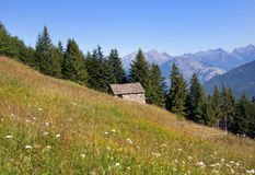 House in the meadow Royalty Free Stock Images