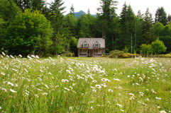 House in a Meadow Royalty Free Stock Photos