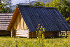House on a meadow Stock Photo