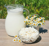 House milk and cottage cheese Royalty Free Stock Photos