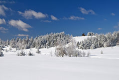House on montain - Winter Mountain Day. Sunny winter day - winter mountain scene, Divcibare, Serbia Stock Photos