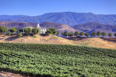 House in Mountains and Vineyard Royalty Free Stock Image