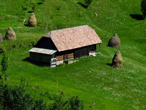 House in nature Stock Image