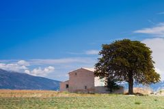 House near tree in the mountains. A lonely house is built near tree in the mountains. An inspirational landscape can be used as cover or background for quotes Royalty Free Stock Photography