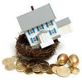 House in a Nest. A house in a nest with golden eggs and coins for many conceptual ideas Royalty Free Stock Photos