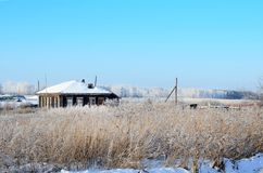 The house next to the dried up grass on a winter day royalty free stock images