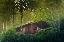 House in the Norway forest Royalty Free Stock Image