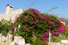 House in Old Datca Stock Photo