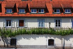 House of the old vine. House of the oldest vine in the world (over 400 years) - tourist attraction of Maribor, Slovenia, European Capital of Culture in 2012 Royalty Free Stock Photography