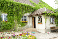 House overgrown with vines. Of flowers in front Royalty Free Stock Photography