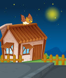House and owl. Illustration of a house and owl in night Stock Photo