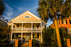 House and palm tree along Murray Drive in Charleston, South Carolina. stock image