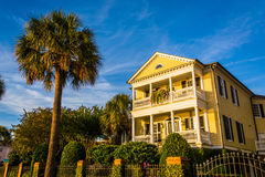 House and palm tree along Murray Drive in Charleston, South Caro Royalty Free Stock Photos