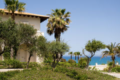 House and palm trees on a background of sea, Greece. Royalty Free Stock Image
