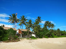 House between palm trees at the beach Stock Photo