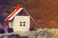 House from paper with a gift red tape against a forest moss. Royalty Free Stock Images