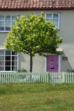 House with Pink Door. House or Cottage with Pink Door and a tree Royalty Free Stock Images