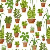 House plant seamless pattern Royalty Free Stock Photo