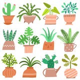 House plant vector icon set. Cute flowers in pots isolated on white. Background vector illustration