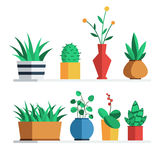House plants and flowers. In colored pots on the shelf for home or office interior decoration. Vector illustration flat style design set  on white background Royalty Free Stock Image