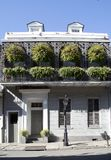 House with plants in French Quarter New Orleans. Louisiana USA stock image