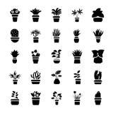 Houseplants Glyph Vector Icon Collection vector illustration