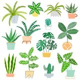 House plants pot vector illustration. Indoor house plants isolated on white background stock illustration