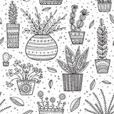 House plants seamless pattern Stock Image