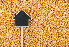 House pointer, the price tag lies on  corn Royalty Free Stock Images
