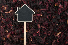 House pointer, the price tag lies on   hibiscus Stock Image